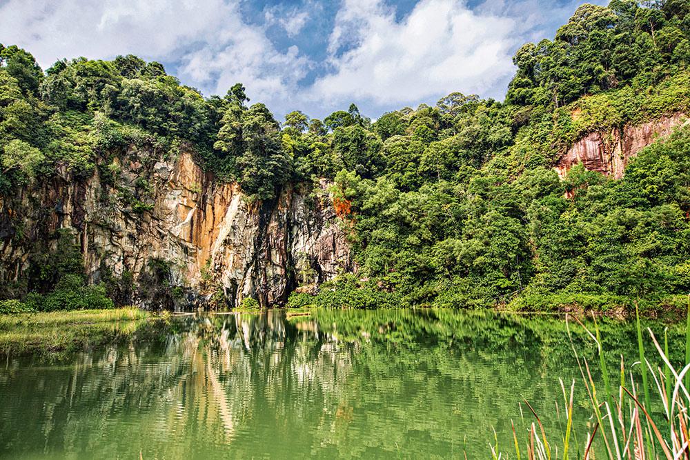 Bukit Timah Naturschutzgebiet